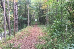 concord-lake-sunapee-rail-trail-work6